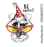 schnauzer in a party cap and in ... | Shutterstock .eps vector #1034825371
