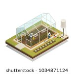 greenhouse cable supported... | Shutterstock .eps vector #1034871124