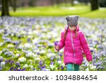cute young girl picking crocus... | Shutterstock . vector #1034884654