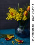 Small photo of Beautiful spring flowers (tulips and acacia dealbata mimosa) in blue glass vase on blue tablecloth