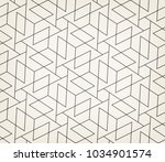 seamless linear pattern with... | Shutterstock .eps vector #1034901574