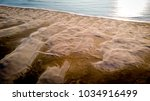 Small photo of aerial view on sand dunes at the edge of the Mediterranean sea day