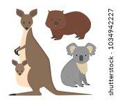 australia wild animals cartoon... | Shutterstock .eps vector #1034942227