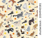 vector breed cats icons sticker.... | Shutterstock .eps vector #1034943181