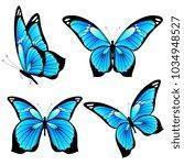 beautiful blue butterflies ... | Shutterstock .eps vector #1034948527