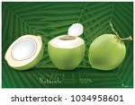 fresh coconut with green... | Shutterstock .eps vector #1034958601