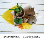 tools for transplanting plants... | Shutterstock . vector #1034963557