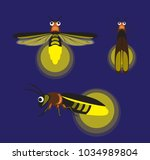 Stock vector insect firefly cute cartoon vector illustration 1034989804