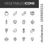 outline black icons set in thin ... | Shutterstock .eps vector #1035005221