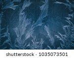 frost pattern or flower on... | Shutterstock . vector #1035073501