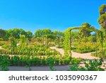 Walking through Buen Retiro Park. Rose Park(Parque De Las Rosas) in Botanical Garden in Park of Retiro. Madrid, Spain.