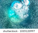 swimming with fish and turtles  ... | Shutterstock . vector #1035120997