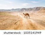 two camels crossing desert road ... | Shutterstock . vector #1035141949