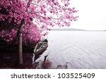 park of pateira de fermentelos | Shutterstock . vector #103525409