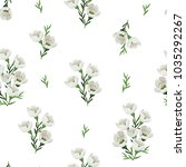 seamless pattern with beautiful ... | Shutterstock .eps vector #1035292267