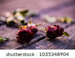 dried red rose  dead red rose... | Shutterstock . vector #1035348904