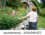 lonely elderly woman wandering... | Shutterstock . vector #1035349327