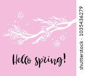 hello spring. cherry blossom... | Shutterstock .eps vector #1035436279