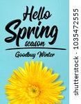 hello spring season. yellow... | Shutterstock . vector #1035472555