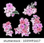 free hand sakura flower vector... | Shutterstock .eps vector #1035491617