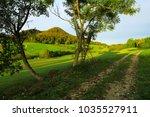 autumn landscape in germany ... | Shutterstock . vector #1035527911