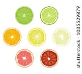 set of isolated colored circle... | Shutterstock .eps vector #1035529879