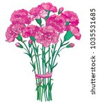 vector bouquet with outline... | Shutterstock .eps vector #1035531685