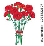 vector bouquet with outline red ... | Shutterstock .eps vector #1035532507