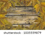 frame background and wallpaper... | Shutterstock . vector #1035559879