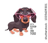 Dachshund In A Pink Glasses....
