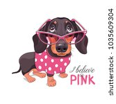 dachshund in a pink glasses and ... | Shutterstock .eps vector #1035609304
