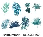 tropical palm leaves  jungle... | Shutterstock .eps vector #1035661459
