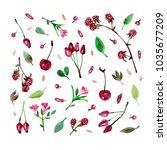 watercolor retro style... | Shutterstock . vector #1035677209