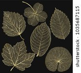 set colored gold leaves. vector ...   Shutterstock .eps vector #1035687115