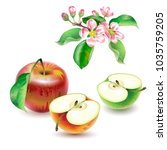 vector realistic  illustration... | Shutterstock .eps vector #1035759205