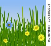 spring yellow and blue flowers ... | Shutterstock .eps vector #1035853105