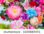 bright and beautiful colors of... | Shutterstock . vector #1035885451
