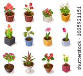 colorful isometric flowers in... | Shutterstock .eps vector #1035921151