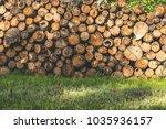 fire wood. home living concept...   Shutterstock . vector #1035936157