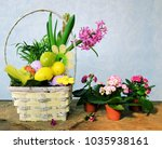 colorful eggs and spring flowers   Shutterstock . vector #1035938161