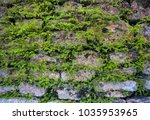 massive wall background with... | Shutterstock . vector #1035953965