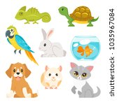 Stock vector vector cartoon style set of home animal pet cat dog hamster and others isolated on white 1035967084