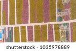 fields of plethora of shared... | Shutterstock . vector #1035978889