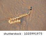 The Golden Alto Saxophone Lies...