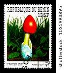 Small photo of MOSCOW, RUSSIA - NOVEMBER 26, 2017: A stamp printed in Benin shows Amanita caesarea, Benin Mushrooms serie, circa 1997
