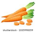 vector illustration of carrot... | Shutterstock .eps vector #1035998359