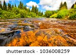 forest river water landscape | Shutterstock . vector #1036008259