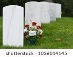 headstones and flowers in... | Shutterstock . vector #1036014145