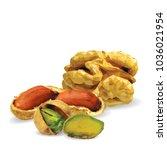 fresh walnut  nutritious... | Shutterstock .eps vector #1036021954