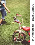 girl and old tricycle vintage... | Shutterstock . vector #1036028809
